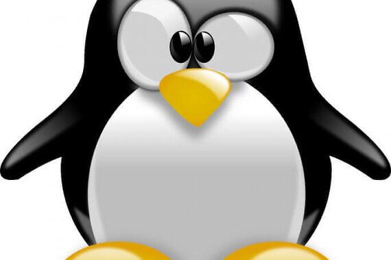 Linux, la storia del pinguino più famoso del mondo